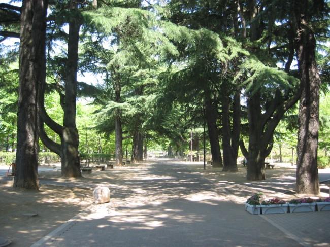 あがたの森公園 - 松本ロケーシ...